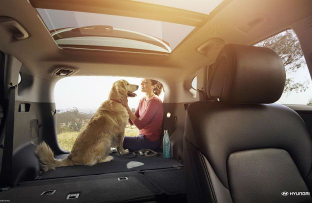 A woman enjoys the spacious cargo area of a 2018 Hyundai Tucson with her dog.